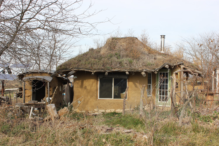 Many of the dwellings at DR had living roofs.