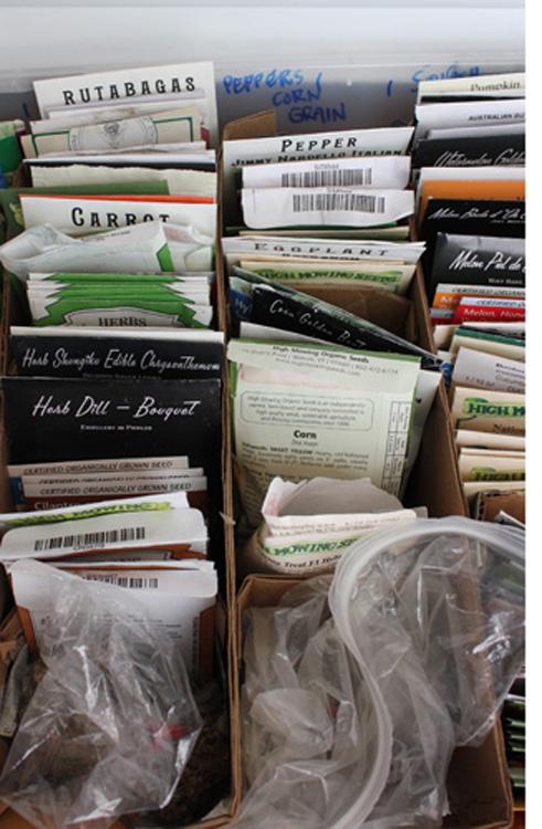 Seed Storage 1