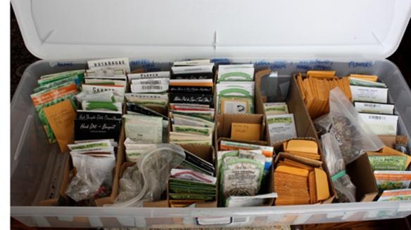 Seed Storage 2